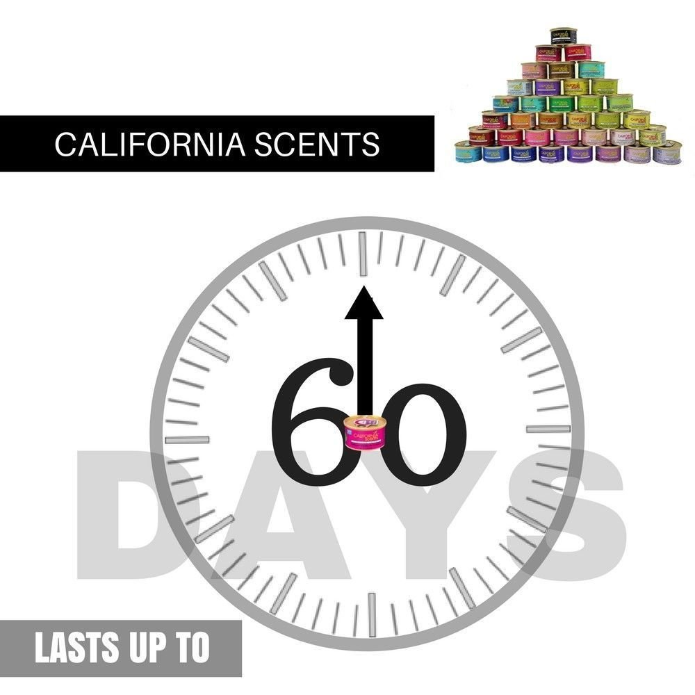 California Scents CAN-18CT - All Fragrances-Asst (Pack of 18)