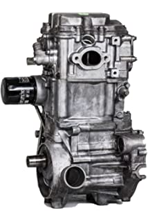 Amazon com: Polaris Sportsman 570 14-16 Engine Motor Rebuilt: Automotive