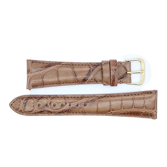 22 mm serpiente marrón mate auténtica Alligator de repuesto correa de reloj banda fabricado en Estados Unidos WS261: Amazon.es: Relojes