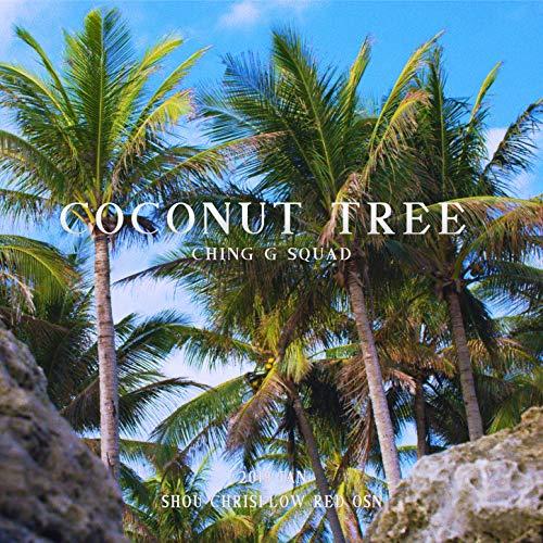 - Coconut Tree