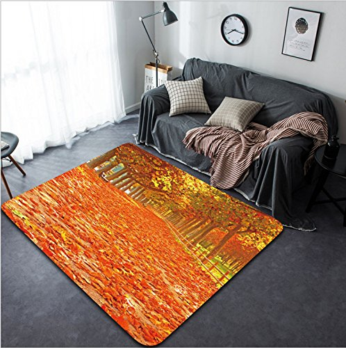 Vanfan Design Home Decorative 84544657 Pathway with nice leaves at autumn Spain Modern Non-Slip Doormats Carpet for Living Dining Room Bedroom Hallway Office Easy Clean Footcloth by vanfan