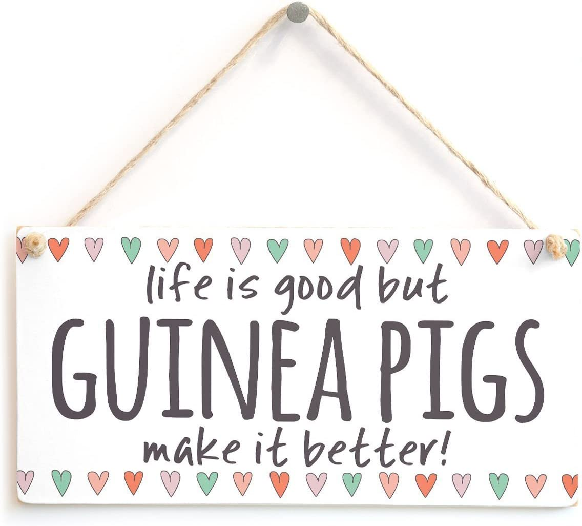 Meijiafei Life is Good but Guinea Pigs Make it Better! - Home Decor Accessory Gift Sign for Guinea Pig Lovers 10