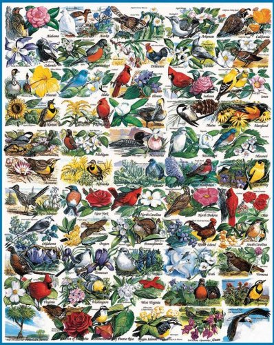 White Mountain Puzzles State Birds and Flowers - 1000 Piece Jigsaw Puzzle (Birds Flowers State And)