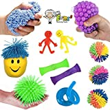 12 Pc Sensory Integration Products & Tools; Stress Reliever Autistic ADHD Toys Variety Pack for Kids