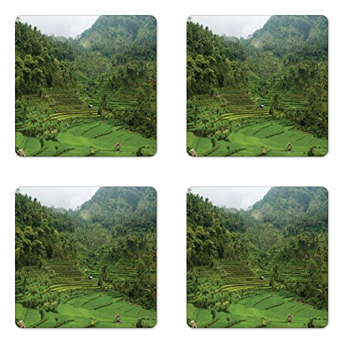 Cheap  Ambesonne Balinese Coaster Set of Four by, Terraced Rice Paddies in Hillside..