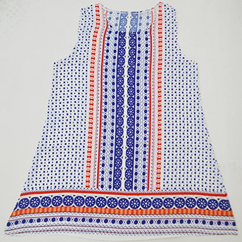 Honghu Femme Rétro Robe été Bohême Casual Sans Manches Impression Top Tunique Dress de Plage Taille L Blanc+Bleu