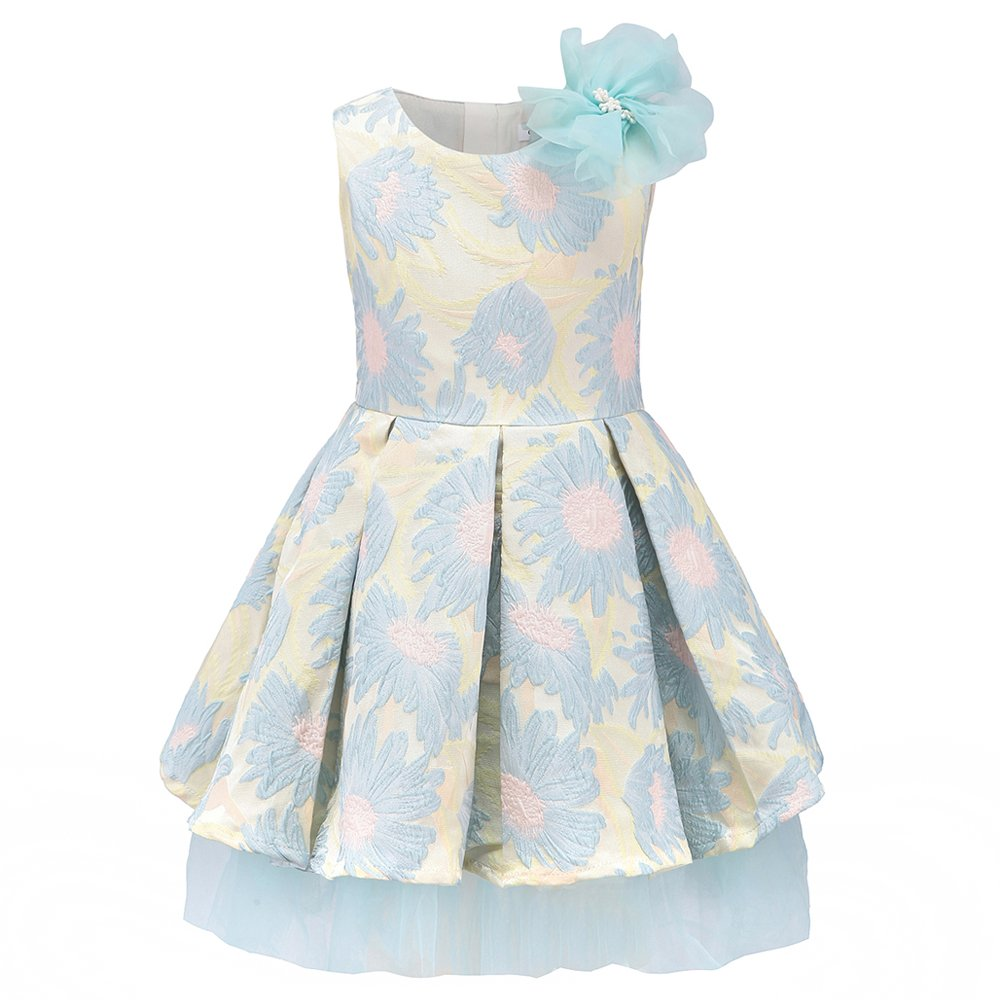 childdkivy Little Girls Clothes Party Dress Toddler/Kid (3(2-3year), 71882B)
