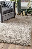 Nuloom 7'10 x 10′ Millicent Shaggy Rug in Taupe Review