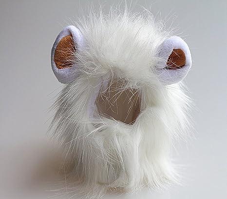 Dealglad - Vestido de mascotas para gato, perro, diseño león