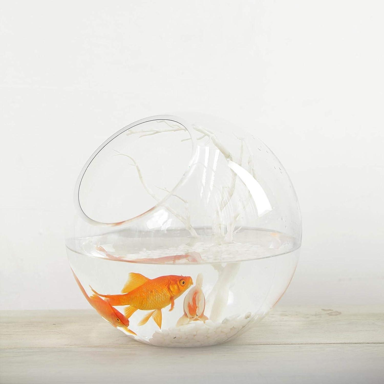 Efavormart Slant Cut 9 Round Glass Vase Table Top Glass Terrarium Bowl Home Kitchen