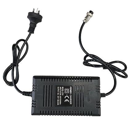 DADEQISH Cargador de batería inteligente 24V para scooter ...