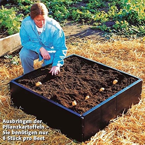 Patatas de cultivo Valla de: Amazon.es: Jardín