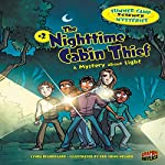 The Nighttime Cabin Thief: A Mystery About Light | Lynda Beauregard