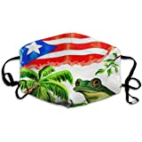 Comfortable Adjustable Flag Of Puerto Rico Palm Frog Printed Facial Decorations For Women And Men