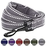 Blueberry Pet 6 Colors Durable 3M Reflective Classic Dog Leash 5 ft x 3/4, Neutral Gray, Medium, Leashes for Dogs