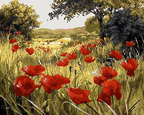 TianMai Paint by Number Kits - Red Poppy Flower Garden 16x20 inch Linen Canvas Paintworks - Digital Oil Painting Canvas Kits for Adults Children Kids Decorations Gifts (No Frame)
