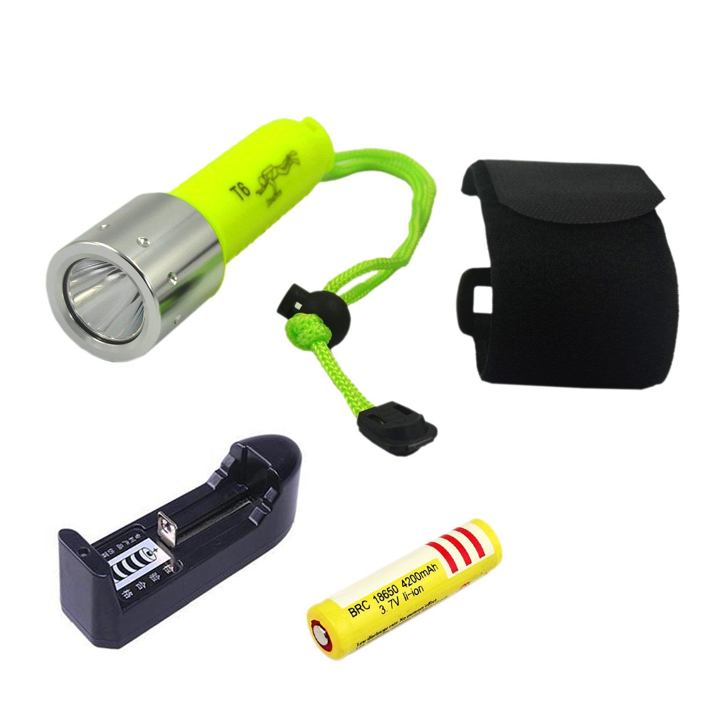 LED Pocket Flashlight Penlight 350 Lumen Pen Light with BBKANI Pen Flashlight