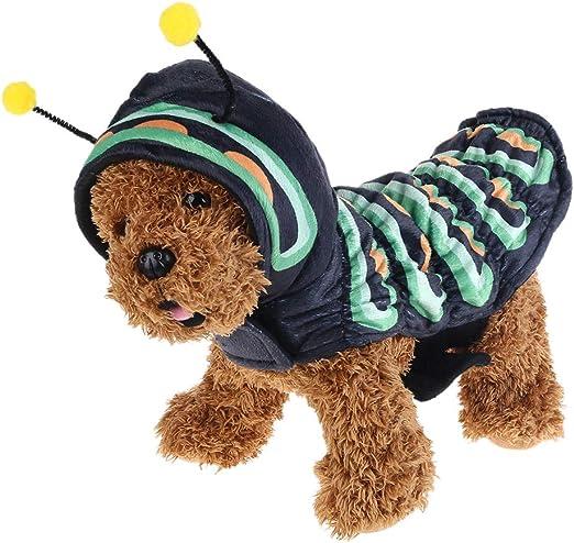 Chou - Disfraz de Navidad para Perro, diseño de Oruga: Amazon.es ...