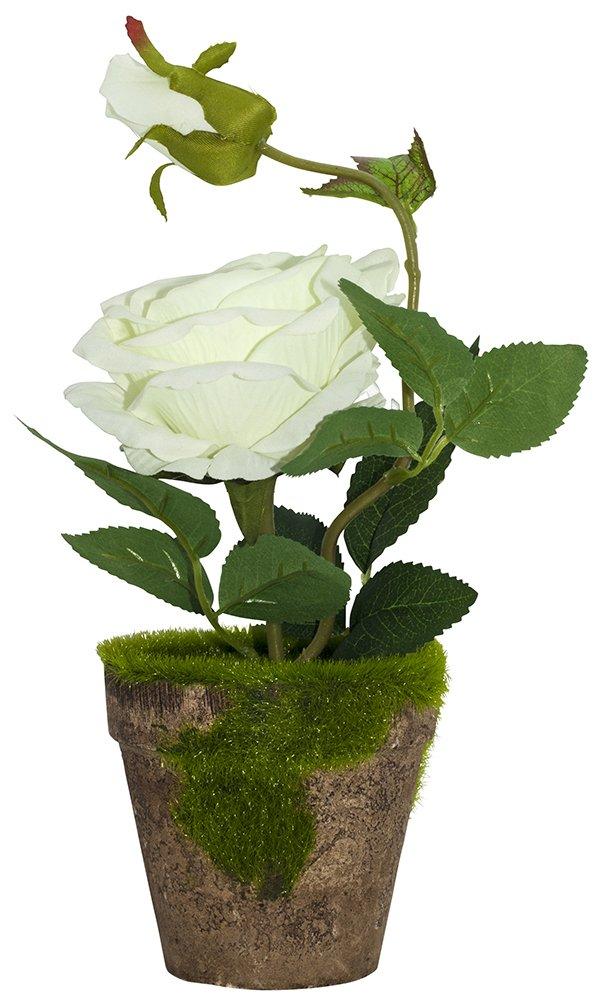 ゴージャスな人工ホワイトローズで素朴なブラウンClay Pot by haysoms B078B25SQK