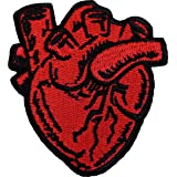 X-Ray Anatomical Heart Patch Embroidered Badge Iron On Sew On Emblem
