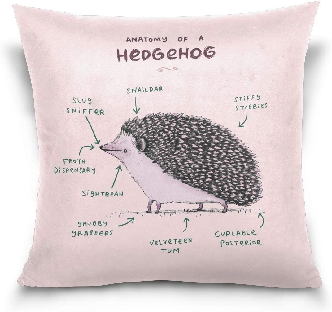 Anatomy of Hedgehog Throw Pillow Case Square Decorative Pillowcases Cushion Case Cover for Home Sofa Couch Bed Covers Decoration 18x18