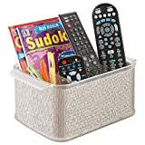 mDesign Storage Organizer Caddy for TV Remote Controls, Magazines - Metallico/Make plain