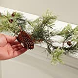 Factory Direct Craft 9 feet of Frosted Artificial Holiday Pine and Pinecone Garland