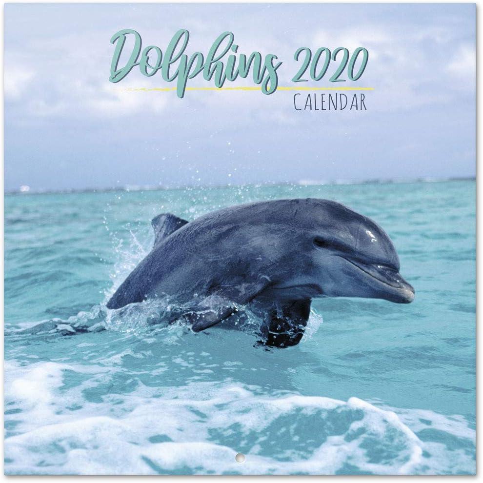 ERIK - Dolphins 2020 Wall Calendar, 16 Months, 30 x 30cm