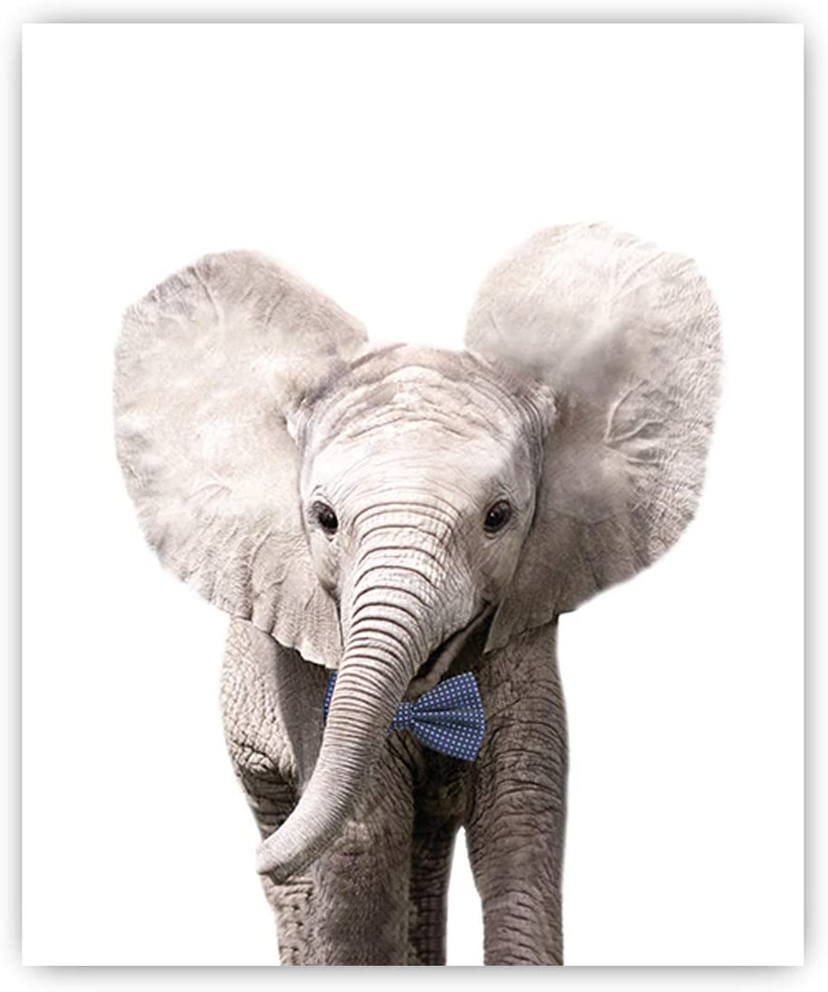 Wall Prints 8x10 Set of 6 Safari Bow Ties Baby Animals Nursery Decor Art Option 3 UNFRAMED