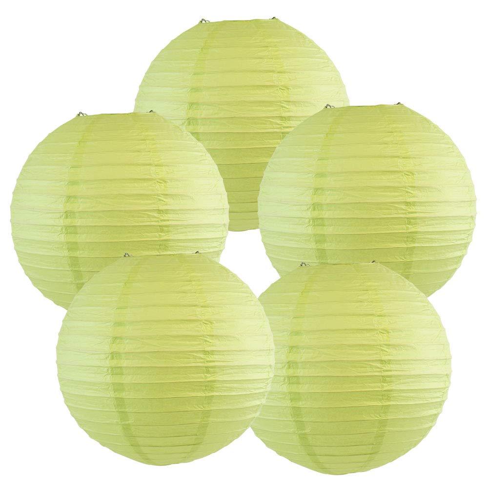 Just Artifacts ペーパーランタン5点セット - (6インチ - 24インチ) 12inch AMZ-RPL5-120024 B01CEX8P02 12inch|Pistachio Green Pistachio Green 12inch