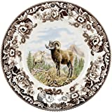 Spode 1597068 Woodland Bighorn Sheep Dinner Plate