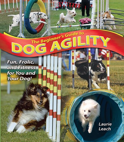 The Beginner's Guide to Dog Agility (Best Small Indoor Dogs For Families)
