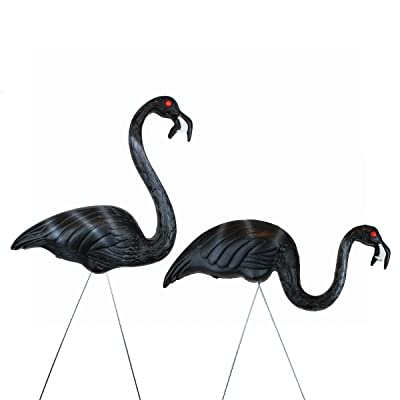 Union Zombie United Solutions 62363 Flamingos, Pair in Display : Outdoor Statues : Garden & Outdoor