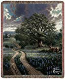 Manual Thomas Kinkade 50 x 60-Inch Tapestry Throw, Country Living