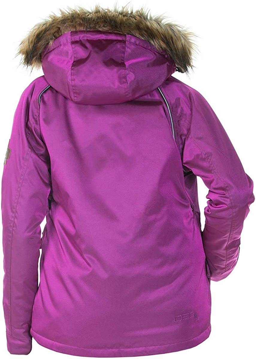 DSG Outerwear Womens Divine 4.0 Snow Bibs