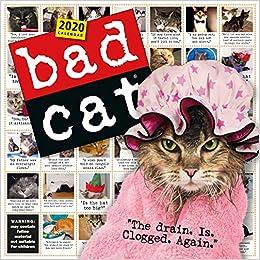Best Short Books 2020 Bad Cat Wall Calendar 2020: Workman Publishing: 9781523506125