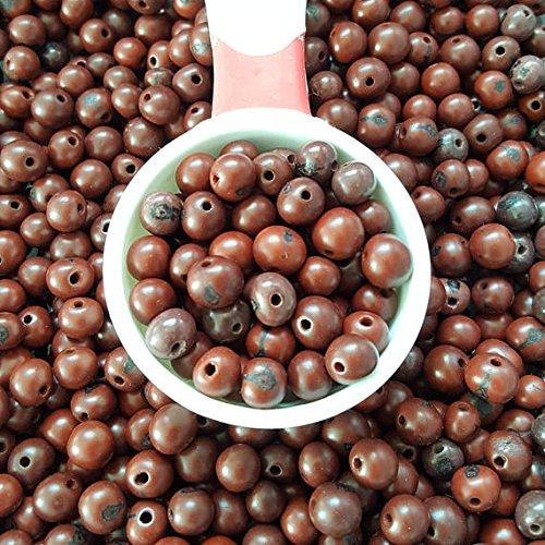 acai nut round beads 8-10mm brown, acai palm tree seed beads 8-10mm round. (50)