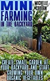 img - for Mini Farming In The Backyard: Create Small Garden At Your Backyard And Start Growing Your Own Organic Vegetables book / textbook / text book