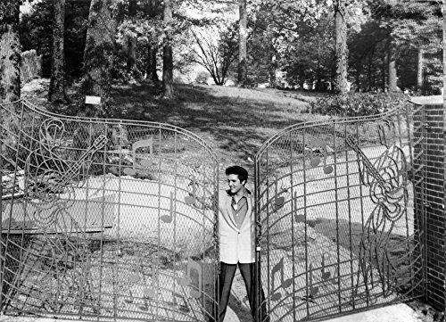 (Elvis Presley by the gates of Graceland Photo Print (10 x 8) )