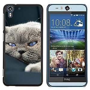 Queen Pattern - FOR HTC Desire EYE M910x - cute sleepy cat house British shorthair - Cubierta del caso de impacto con el patr???¡¯???€????€????&