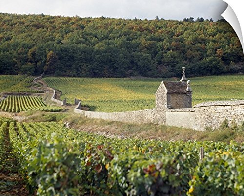 Canvas On Demand Wall Peel Wall Art Print entitled Stone wall dividing vineyards, Clos St. Jacques, Gevrey-Chambertin, Cote-dOr, Burgundy, France (Gevrey Burgundy Chambertin)