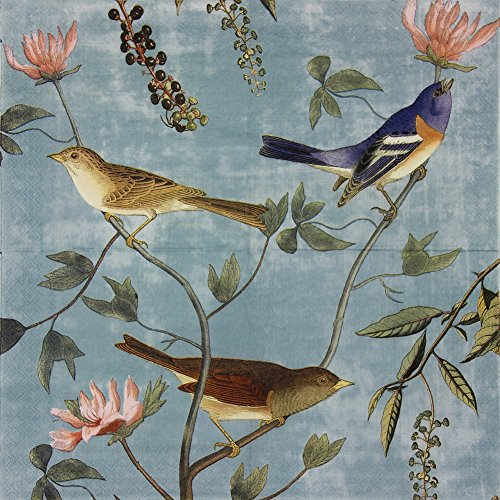 Paper Napkins, Alink Luncheon Party Napkins Serviettes Printed Birds 20 Count 2-Ply, 13 x 13 Inch ¡­