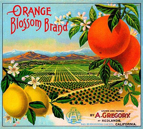 - A SLICE IN TIME Redlands Orange Blossom Brand Orange Citrus Fruit Crate Box Label Art Print