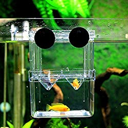 She-love Aquarium Fish Tank, Guppy Double Breeding Breeder Rearing Trap Box Hatchery (L)
