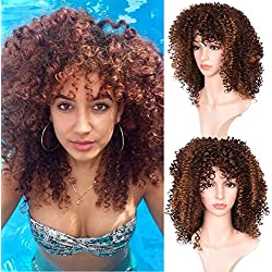 Good Quality Afro Kinky Curly Blown Color Wigs With Free Wig Cap Synthetic Kinkys Curly Christmas Cosplay Party Wig Full Wigs For Black Women(03M17-blown color)