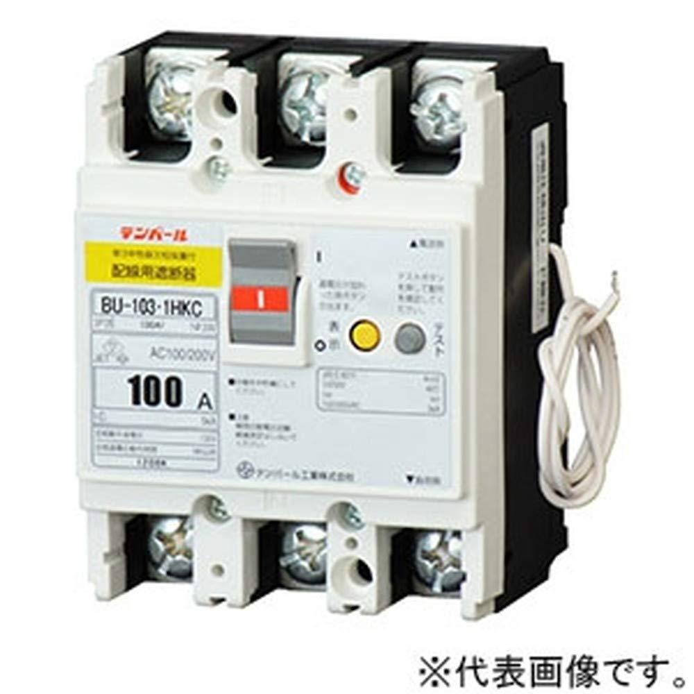 テンパール工業 パールテクトブレーカ 3P2E100AF 75A パールテクト専用 単3中性線欠相保護機能付 BU1030HKC07 B07LFRGKK1