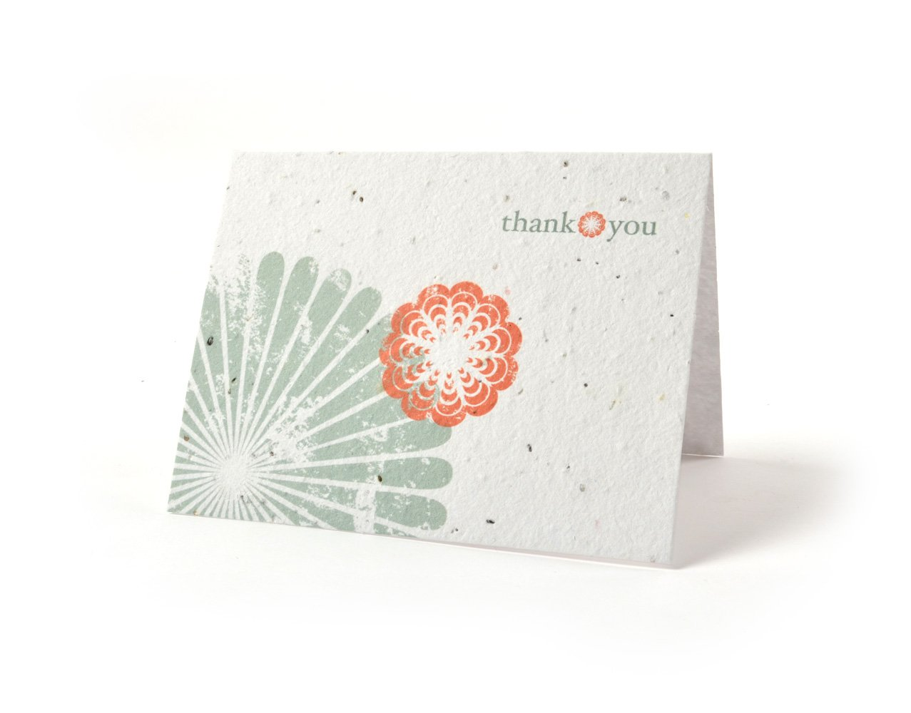 Amazon Bloomin Thanks A Bunch Seed Paper Greeting Cards Poppy