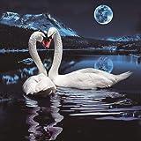Animal Swan Part Diamond Painting,Pausseo 5D DIY
