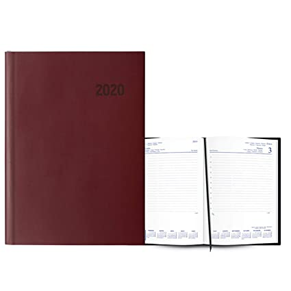 Agenda Anual Modelo París 2020 Burdeos: Amazon.es: Electrónica