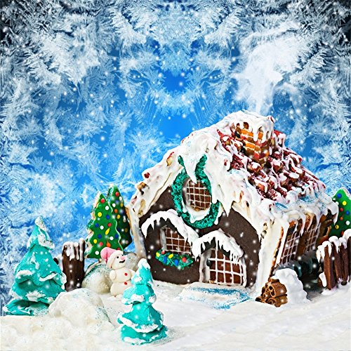 Laeacco Vinyl 8x8ft Photography Background Christmas Gingerbread Homemade House Presents Cute Snowman Winter Snowflakes Blue Tone Background Kids Family Portraits Shooting Video Studio Props (Homemade Sky Lanterns)